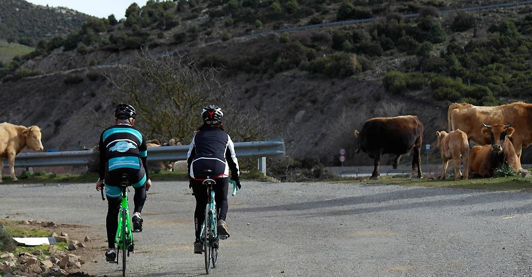 Sardinia big rides