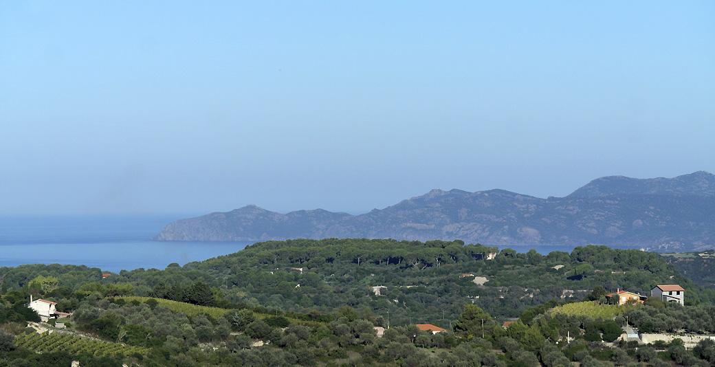 Planargia countryside